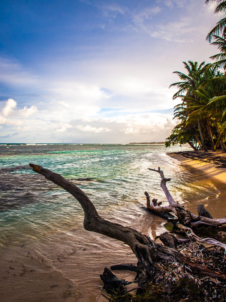 Sunset at the Beach in guadeloupe caribbean sea