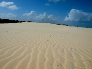 beach-on-lonely-island-surfers-paradise-gold-coast
