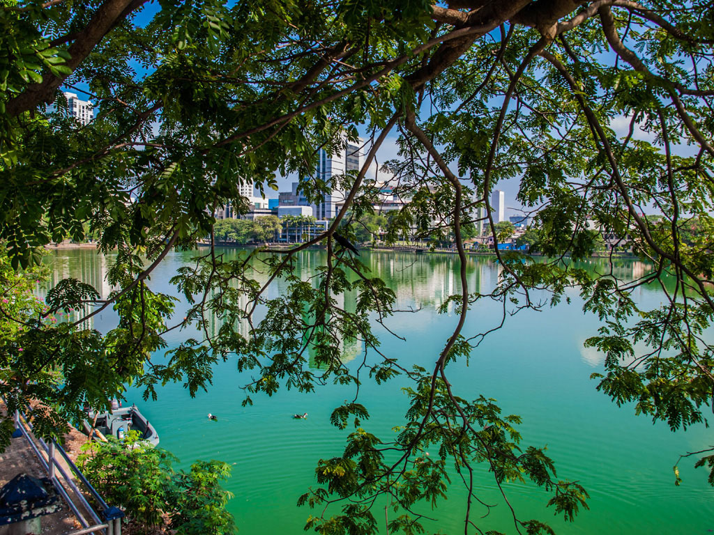 green beira lake in colombo photos