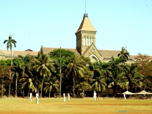 cricket-in-mumbai-university