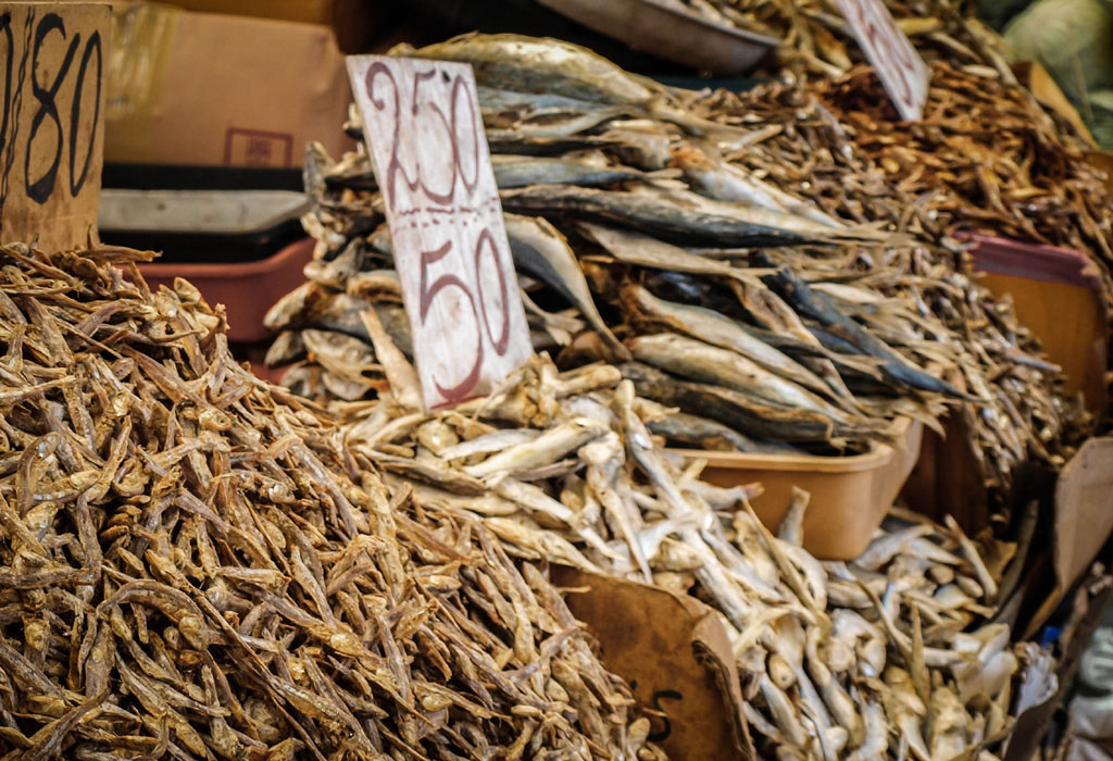 dried fish market in sri lanka