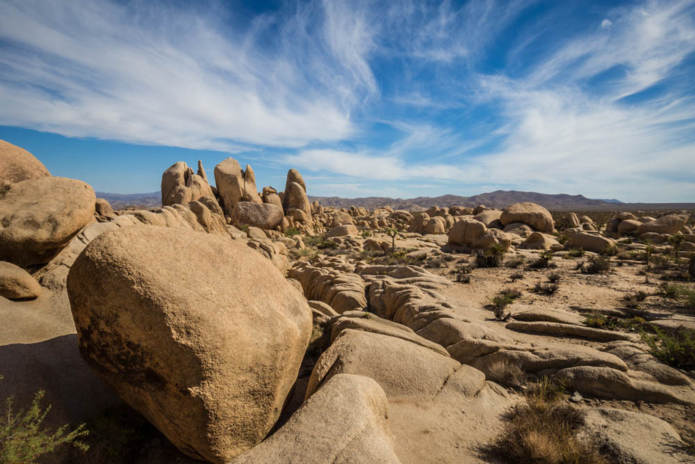 joshua tree hike