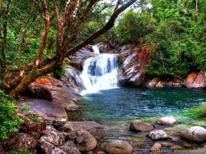 jungle-pool-australia-roadtrip