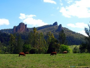 mountains-near-nimbin-australia-photos