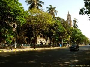 mumbai-university-street