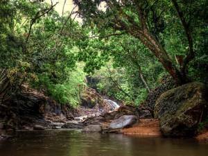 waterfall guadeloupe photos 2014